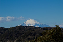 Mt. Fuji (Andi [アンデイ]) Tags: kamakura japan temple buddhism shinto shrine nature traditional torii 日本 鎌倉 streetphotography streetshots detail