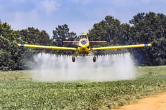 Crop Duster (photographyguy) Tags: airplane cropduster crop field agriculture pesticide louisiana northlouisiana chemicals trees yellow gilliamlouisiana aerialapplication mist agriculturalaircraft aerialtopdressing