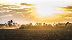 . (Cristhian Keppert) Tags: campo country siembra ocaaso sunset orange argentina chaco