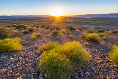 Sun setting at Wahweap Lookout (NettyA) Tags: 2017 arizona glencanyonnationalrecreationarea page sonya7r usa wahweaplookout sunset travel grass plants rocks sunburst sun windy