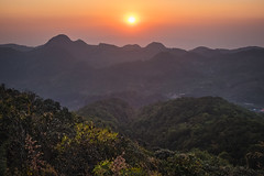 sunset scene (Flutechill) Tags: mountain nature asia landscape forest scenics hill outdoors sunset travel sky tree tropicalclimate fog thailand chinaeastasia mountainpeak beautyinnature morning sunrisedawn doiangkhang chiangmai
