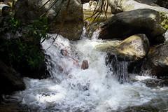 Hastaserunapiedramasdelrio (NochedeLunaLlena) Tags: rio river man hombre primitive primitivo bucaramanga colombia tona santander agua cannon t3i cannont3i summer verano cascada water waterfall naturaleza wild nature