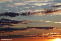 EN UN ATARDECER AGRAVA LA TRISTEZA DEL MENDIGO. IN A SUNSET AGGREGATES THE SORROW OF THE BEGGAR. NEW YORK CITY. (ALBERTO CERVANTES PHOTOGRAPHY) Tags: sunset atardecer mendigo sorrow tristeza caridad charity beggar agrava aggregates twilight dusk oscuridad crepusculo tiniebla anochecer ocaso cielo sky cloud nubes sol sun color colors