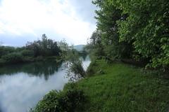 2017-05-12 12-53-38 - IMG_8732 (rudolf.brinkmoeller) Tags: wandern slowenien laibachermoor ljubljanskobarje landschaft natur ljubljanica