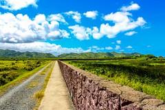 Kawai Nui Marsh (thehikingHI) Tags: walk hike kailua paved landscape sky clouds marsh hawaii oahu kawainui