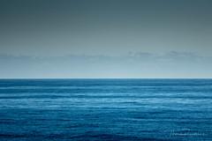 P1000857.jpg (meerecinaus) Tags: longreef beach