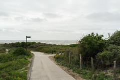 vlakbij de zee