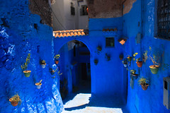 IMG_4649 (FocusForFocusSake) Tags: travel morroco canon sunset chefchaouen marrakech tanger canon550d blue animals cat dog colors desert sand city people medina friendship sky mountains cars camel kids textures tea palace mosque donkey woman lamp green nature road