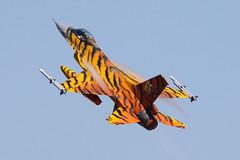FA-77 (Ian.Older) Tags: general dynamics f16 f16a mlu viper 31 tigers belgium air force zaragoza tigermeet ntm16 nato military jet fighter aircraft aviation fighting falcon