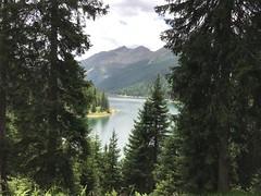 Lago d'Isola San Bernardino CH (CANETTA Brunello) Tags:  svizzera grigioni diga lago bernardino san