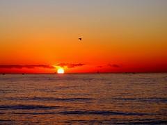 Saliendo el sol (camus agp) Tags: amanecer mar costa mediterraneo agua cielo horizonte españa gaviotas