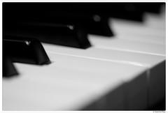 20170703-001 (Aaron Cat) Tags: aaronhsu canon eos 5d markiii canoneos5dmarkiii canonef100mmf28macrousm bw blackandwhite piano music macro macrodreams macromondays relaxation