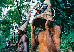 Tribesmen dancing in the jungle with helmet masks for a circumcision ceremony, Malampa Province, Malekula Island, Vanuatu (Eric Lafforgue) Tags: adultsonly celebration ceremony circumcision culture custom dance dancing ethnic forest grade ground helmetmask horizontal indigenous island jungle kastom makeup malakula malampaprovince malekula mask masks melanesia men nambas newhebrides nivanuatu oceania onlymen outdoors pacificocean pandanus pigtusk shirtless tourism tradition traditionalclothing traveldestination tribal tribe tribesmen twopeople vanuatu vegetation hassvanuatu022 malekulaisland