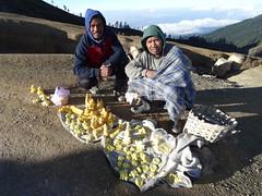 Hardy Boys (Canis lupus alba) Tags: kawah ijen kawahijen indonesia java licin banyuwangi volcano caldera sulphur sulfur