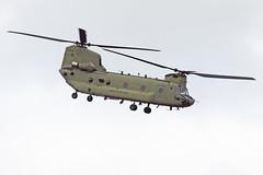 Boeing CH-47F Chinook - 13-08434 - HAJ - 01.07.2017 (Matthias Schichta) Tags: haj eddv hannoverlangenhagen aviation planespotting hannover langenhagen plane flugzeugbilder flughafen flugzeug airport boeing ch47f chinook hubschrauber helicopter usarmy