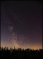 Vers le sud (o.penet) Tags: nuits honfleur skyes stars nikon normandy d750 penet sundowns moonsets voie lactée milky way photoastronomy etoiles
