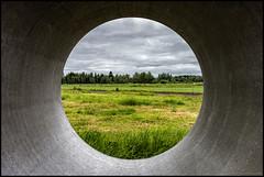 Pipescape (Jonas Thomén) Tags: pipe rör field åker grass gräs circle cirkel frame ram landscape landskap cement concrete moln clouds hdr rx100