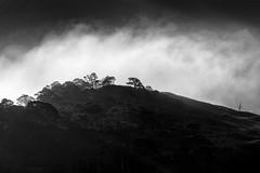 Outcast (jellyfire) Tags: bendamph distagont3518 elgol february highlands landscape landscapephotography scotland sony sonya7r torridon winter ze zeissdistagont18mmf35ze leeacaster wwwleeacastercom zeiss