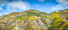 Panoramic view of flower covered hills below Mckittrick Summit, (Gary Rides Bikes) Tags: california carrizoplain carrizoplainnationalmonument mckittricksummit northamerica sanluisobispocounty springtime temblorrange usa beautyinnature blue cloudsky cumuluscloud cumulushumilis goldcolored greencolor hill idyllic inbloom landscape mountain mountainrange nature nopeople orangecolor panoramic plain purple remote scenicsnature vibrantcolor violet yellow