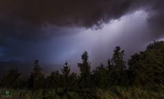 Before the storm (Elisa.95) Tags: storm sky dark rain clouds trentino italy landscape nikon light lightning trees