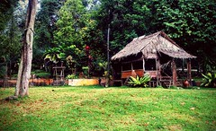 https://foursquare.com/v/taman-botani-negara-shah-alam/4de8f511d4c0faa5643bdd4a #holidays #travel #garden #green #nature #Asian #Malaysia #selangor #shahalam #度假 #旅行 #大自然 #绿色 #公园 #亚洲 #马来西亚 #雪兰莪 #沙阿南 #outdoor #外景 (soonlung81) Tags: 大自然 outdoor 度假 马来西亚 shahalam malaysia green holidays garden 沙阿南 公园 旅行 亚洲 nature selangor 外景 雪兰莪 绿色 asian travel