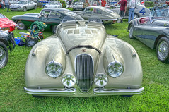 Jaguar XK 120 Roadster (dmentd) Tags: jaguar xk 120 roadster