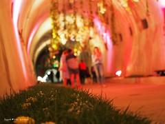 underground-tunnel-floraart_37