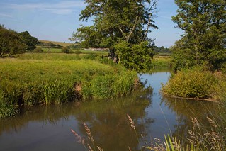 River Rother (west sussex)