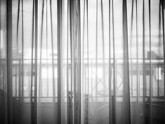 (赤いミルク) Tags: grain vignette blackandwhite monochrome ビンテージ ビニル black romantism gothic コントラスト 赤 red ウォール wall ゴースト 悪魔 ghost 友人 ドア doors 贈り物 gift 地平線 horizon モノクローム 暗い street 壁 surreal intriguing 生活 life architecture text door texture 秋 雨 overpast coast mist ocean water 賞賛 光 影 白黒 幽霊 いかだ room
