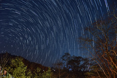 As the world goes round (Shakyasom Majumder) Tags: stars startrails nature naturephotography landscape landscapephotography night nightphotography mysticnight polestar mountains hills wideangle orangecourtresort northeastindia nikon nikond500 afsnikkor18105vr aritar southsikkim sikkimtourism sikkimhimalayas