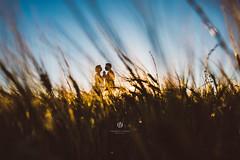 Luce.. Amore.. Natura.. Vita. (Lo_straniero) Tags: wedding silhouette younesstaouil fotografo creativo weddingphotographer puglia