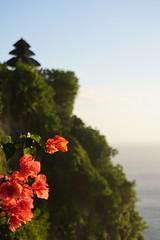 Uluwatu, Bali, Indonesia (Michél Pretzsch) Tags: indonesia travel indo bali uluwatu asia michel michél pretzsch sony diamir erlebnisreisen wonderfulindonesia