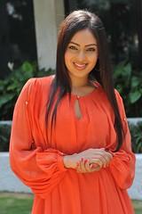 Indian Actress NIKESHA PATEL Hot Sexy Images Set-1 (96)
