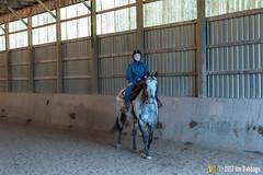 JBC_9280.jpg (Jim Babbage) Tags: krahc annualshow horse bethany horseshow 164