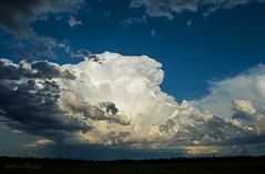 Touch the Clouds (cowgirljo78) Tags: clouds cloudporn skies huge gigantic thunderheads cumulonimbus rain stormy summer wisconsin weather fields field farmland blue sky amazing storms thunder