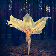shedding skin (brookeshaden) Tags: fineartphotography fineart conceptualart conceptualphotography metamorphosis sheddingskin cinematicvideo artfilm artvideo butterfly