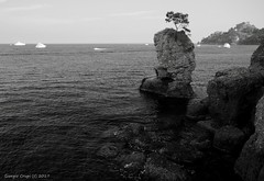 Solitary (- Crupi Giorgio (official)) Tags: italy liguria portofino landscape seascape sea sky blackwhite monochrome canon canoneos7d sigma sigma1020mm