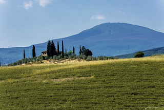 TOSCANA - CASOLARE SULLA COLLINA   ----    COTTAGE ON THE HILL