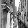 54i60617 (photo & life) Tags: italia italie ville city venise street streetphotography humanistphotography photography photolife™ noiretblanc blackandwhite fujifilm fujinon fujinonxf14mmf28r 14mm squareformat squarephotography jfl europe