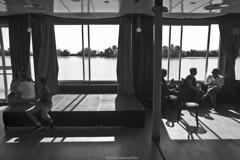 Relajados - Relaxed (ricardocarmonafdez) Tags: andalucía sevilla guadalquivir rio river agua water monocromo monochrome blackandwhite bw bn contraluz backlighting canon 60d riverscape ngc contraste contrast sol sunlight sombras shadows shade orilla riverbank