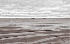 Far Distant Ships (johnscratchley) Tags: landscape sepiatone ships lagoon hdr blackandwhitephotography