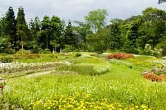 IMG_4404 (翔志) Tags: taiwan taoyuan fuxing shanggaorao valley garden taoyuanhsienku 桃源仙谷