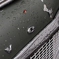 Volvo 544-130-2017 (Stein Grebstad) Tags: volvo volvopv544 swedishcar automobile volvo544 car swedish møllenberg trondheim norway norge möllenberg vintagecar veteranbil