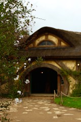 IMG_3966 (sagamalm) Tags: new zealand travel canon hobbiton lordoftherings thehobbit