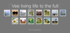 Images Currently in Explore to June 2017 (Vee living life to the full) Tags: inexplore explored photos records bighugelabs algorithm