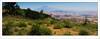 Mount Etna panorama (G. Postlethwaite esq.) Tags: aidone italy morgantina mountetna sicily sonya7mkii sonyalphadslr fullframe lake mirrorless outdoor panorama photoborder sky trees volcano