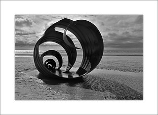 Shell on a beach, by Stephen Broadbent