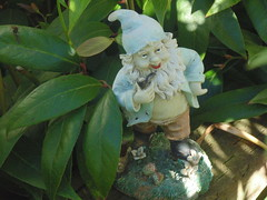 Grandpa Gnome - I found Grandpa Gnome hiding in the bushes with his trusty  pipe, just keeping an eye on the impish elves. (BluebearsLani) Tags: grampagnome