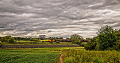 Tug and tanks (Peter Leigh50) Tags: colas class60 tug wistow oil tanks tankers wagon farmland field hedge trees overcast dull clouds