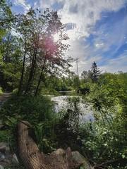 Beautiful BC. (thnewblack) Tags: lg lgg6 g6 android smartphone cameraphone beautiful britishcolumbia hdr vsco 13mp nature outdoors